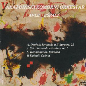 Varazdinski komorni orkestar アーティスト写真