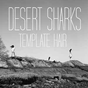 Desert Sharks アーティスト写真
