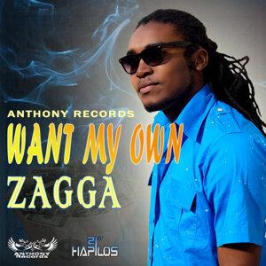 Zagga 歌手頭像