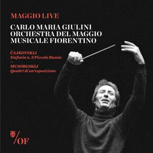Carlo Maria Giulini - Orchestra del Maggio Musicale Fiorentino 歌手頭像