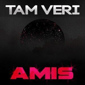 Tam Veri アーティスト写真