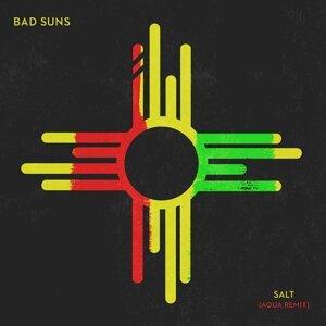 Bad Suns 歌手頭像