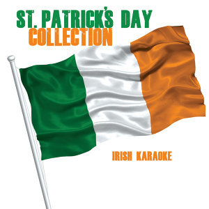 The Irish Karaoke Singers 歌手頭像