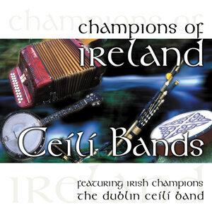 The Dublin Céilí Band アーティスト写真