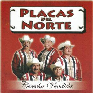 Placas Del Norte アーティスト写真