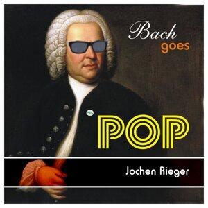 Jochen Rieger 歌手頭像