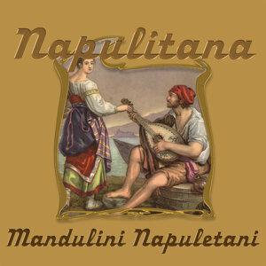 Mandulini Napulitani アーティスト写真