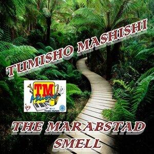 Tumisho Mashishi 歌手頭像