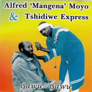 Alfred ' Mangena ' Moyo & Tshidiwe Express 歌手頭像