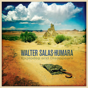 Walter Salas-Humara 歌手頭像