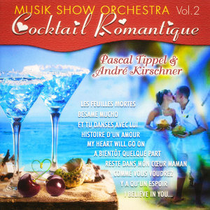 André Kirschner,Music Show Orchestra,Pascal Tippel アーティスト写真