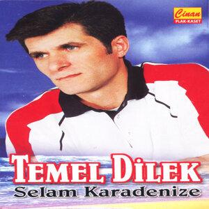 Temel Dilek アーティスト写真