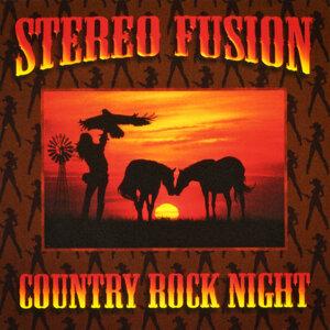 Stereo Fusion 歌手頭像