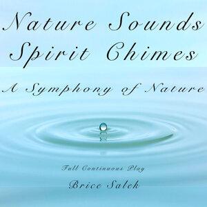 Nature Sounds Brice Salek アーティスト写真