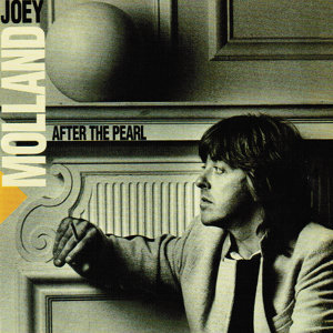 Joey Molland 歌手頭像
