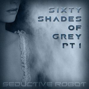 Seductive Robot アーティスト写真