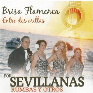Brisa Flamenca 歌手頭像