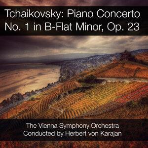 Herbert von Karajan & Vienna Symphony Orchestra アーティスト写真