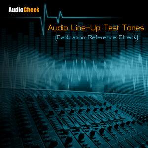 Audio Check アーティスト写真