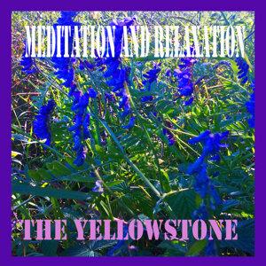 The Yellowstone アーティスト写真