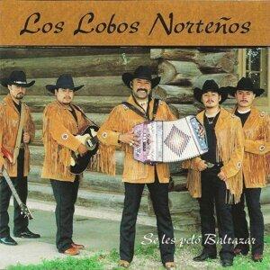 Los Lobos Norteños 歌手頭像