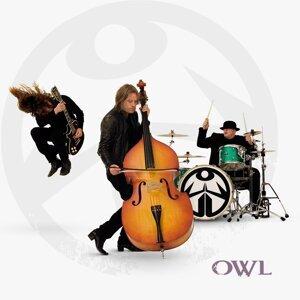 OWL 歌手頭像