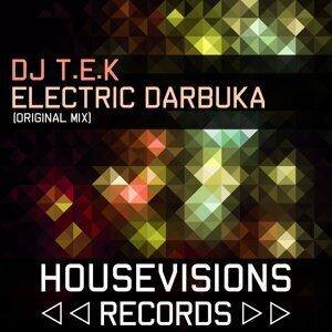 DJ T.E.K 歌手頭像