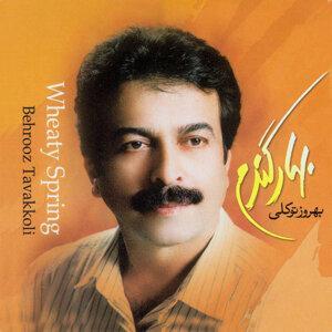 Behrouz Tavakkoli 歌手頭像