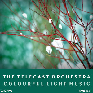 The Telecast Orchestra 歌手頭像