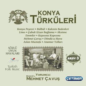 Mehmet Çavuş 歌手頭像