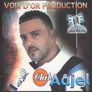 Cheb Aajel 歌手頭像