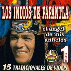 Los Indios de Papantla アーティスト写真