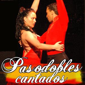 Pasodobles de Antonio y Rosario アーティスト写真