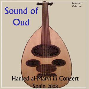 Hamed al-Marvi アーティスト写真