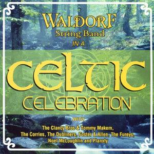 Waldorf String Band 歌手頭像