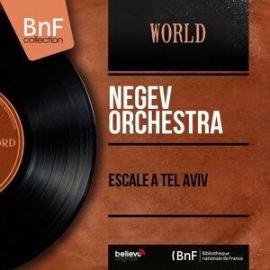 Negev Orchestra 歌手頭像
