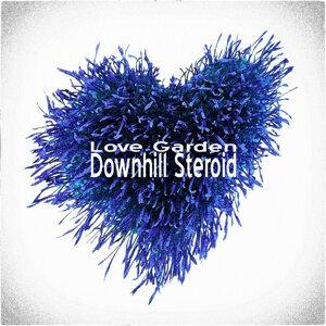 Downhill Steroid 歌手頭像