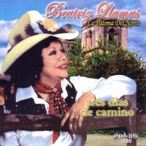 Beatriz Llamas 歌手頭像