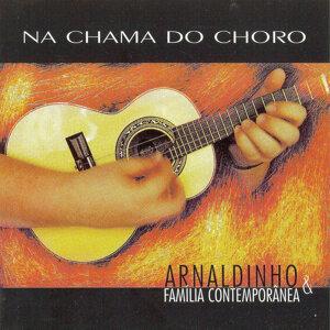 Arnaldinho e Família Contemporânea 歌手頭像