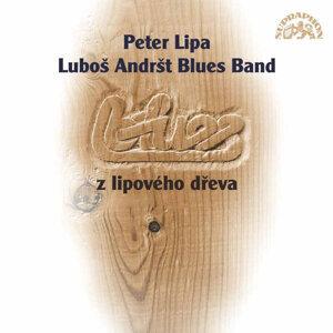 Peter Lipa 歌手頭像