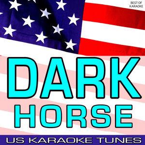 US Karaoke Tunes アーティスト写真