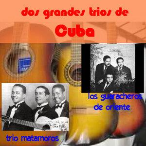 Trio Matamoros Guaracheros De Oriente 歌手頭像