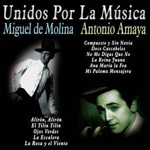 Miguel de Molina & Antonio Amaya アーティスト写真