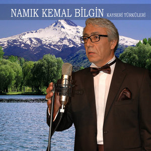 Namık Kemal Bilgin 歌手頭像
