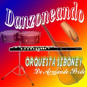 Orquesta Siboney de Armando Pride アーティスト写真