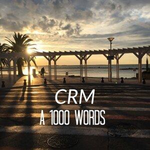 CRM アーティスト写真