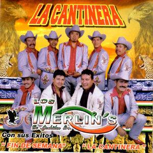 Los Merlins 歌手頭像