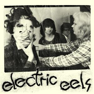 Electric Eels 歌手頭像