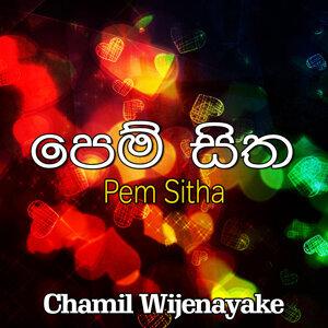 Chamil Wijenayake アーティスト写真