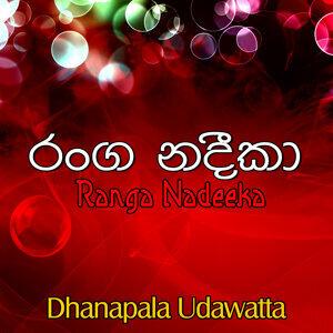 Dhanapala Udawatta アーティスト写真